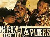 Chaka Demus Pliers album pour 2011