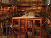 Ours dévoilent coin leurs bibliothèques…