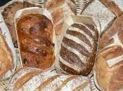 Comme nous parlons beaucoup pâtes pains avec KRUPS, voici nouveau livre consacré Pain ceux l'aiment