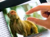 Push Press bouscule codes l'édition numérique avec l'aide d'Al Gore