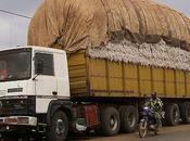 camions gros porteurs