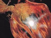 Uriah Heep #5-Return Fantasy-1975