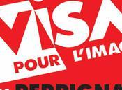 Visa pour l'image 2011