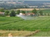 Agriculture répondre l'urgence crise relever défis 21ème siècle