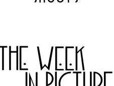 Week Pictures
