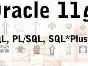 Oracle SQL, PL/SQL, SQL*Plus