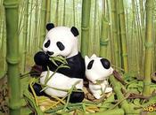 PANDA MODE PUBS avec