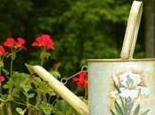 Quelques astuces pour entretenir fleurs pendant vacances
