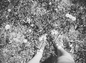 Summer bohemian