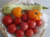 Gratin courge Nice tomates thon