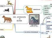 animaux Rome