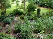 """L'un endroits préférés jardin, c'est """"bassin..."""