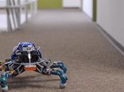 font chercheurs robotique pendant leur pause