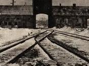 Arrivée d'un convoi pensionnaires d'hôpitaux psychiatriques Auschwitz