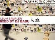 preview Cats Dogs d'Evidence mixée Babu