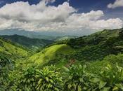 Costa Rica l'écotourisme peut-il avoir conséquences négatives