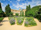 Abbaye Fontfroide, vins porteurs d'histoire(s) d'oenotourisme