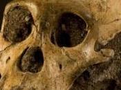 s'appelle Sediba australopithèque serait notre plus vieil ancêtre