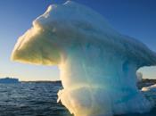 course pétrole Arctique