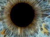 Rien pour yeux lutéine épinards