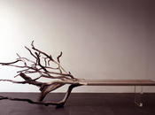 Fallen Tree Benjamin Graindorge, l'ADN bois révélé