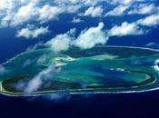 jachère Tahiti