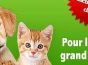 Codes réduction Zooplus Jouets pour chats, chiens rongeurs