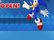 boutique ligne dédiée Sonic