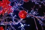 Bientôt Noël, voici quelques manières fêter manière plus écologique
