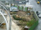 Jean Bouin dernier jour arbres condamnés