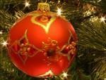 Quatrièmes couvertures spécial Noël quelques belles parutions