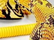 Combiné rétro serpent