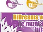 Interview: Bidreams.fr