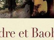 Cèdre Baobab
