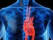 survit arrêt cardiaque... parce qu'il deux coeurs