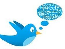 Twitter nombre d'utilisateurs doublé France mais reste faible