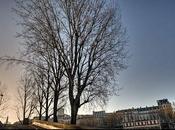 HDR. Bord Seine parc Belleville, Paris.