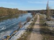 Moselle gelée
