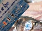 nouvel écolabel français pour pêche durable