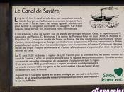 canal Savières