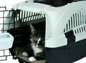 Comment transformer cage transport chat espace plaisir