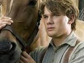 Langue cheval horse, Steven Spielberg