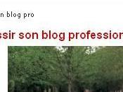 Réussir Blog Professionnel Journal