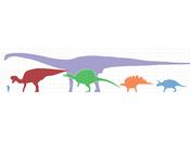 Sexe, cous Sauropodes