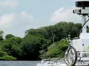 Parcourez l'Amazonie avec Google Street View