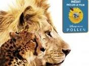 Disney nature Félins Sortie BluRay