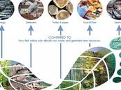 Comment retailers peuvent mesurer leur impact écologique?