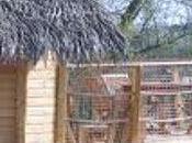 Cabanes Maisons-Laffitte