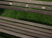 petit projet week-end Banc parc