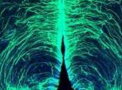 Obésité Quelques neurones trop responsables quelques kilos Nature Neuroscience